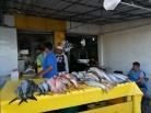 Pesca fresca en el mercado de Bazurto en Cartagena